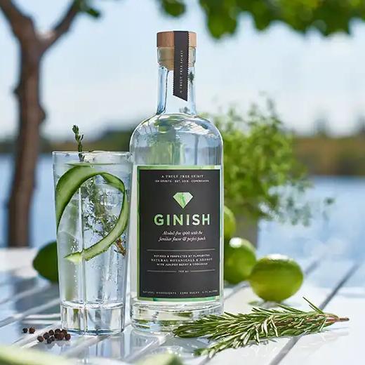 Ginish at Holland & Barratt